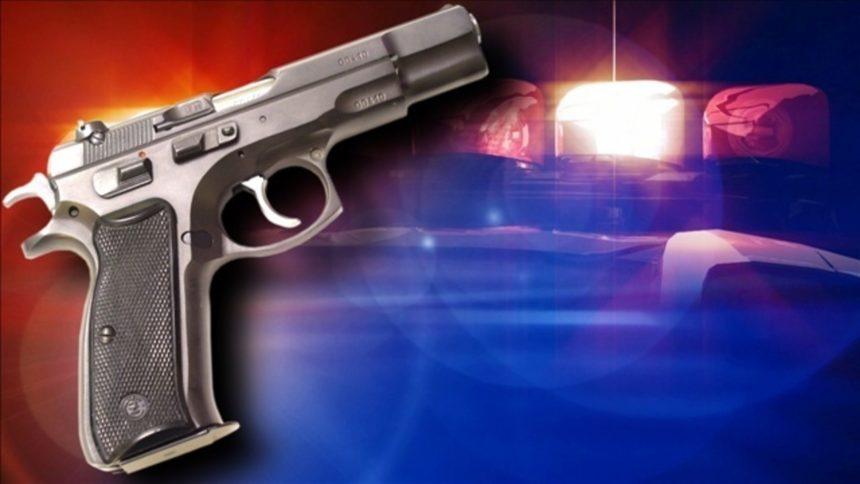 gun-crime-police-logo-jpg_3528833_ver1.0_1280_720